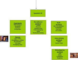 Organisation-ny-2